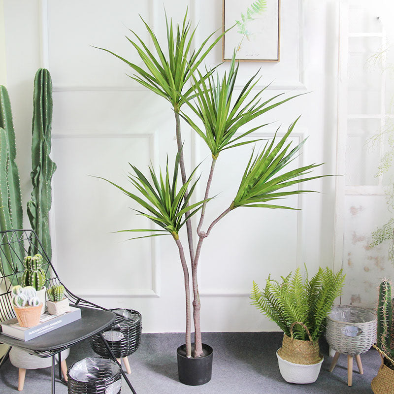 Tropical Dracaena Artificial Tree