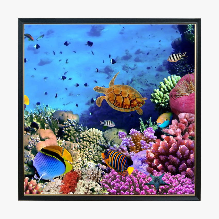 Crystal Painting - Coral and Tropical Fish
