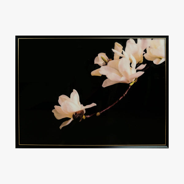 Crystal Painting - Magnolia Blossom in Dark