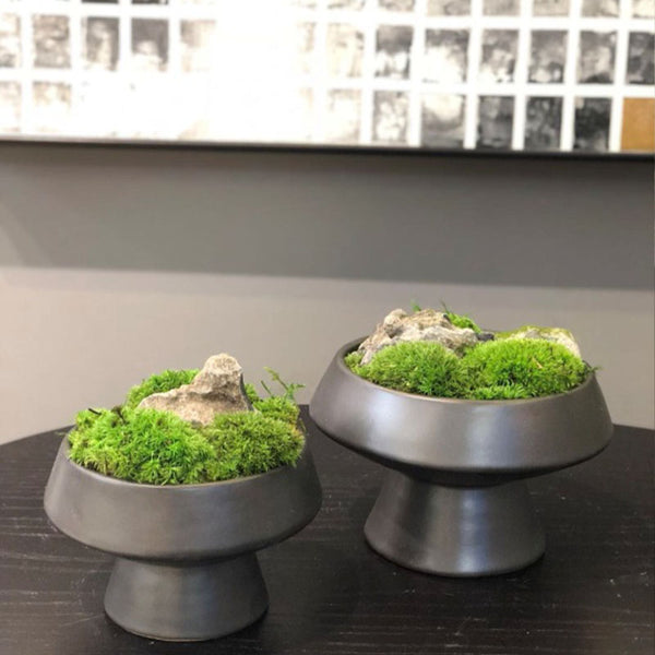 Ikebana Art - Artificial Moss and Rock with Vase