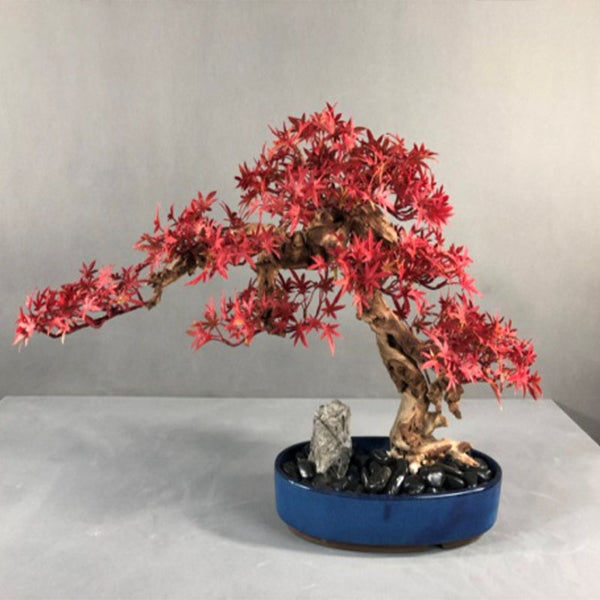 Ikebana Art - Artificial Acer Rubrum with Pot
