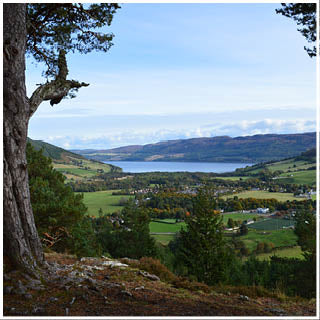 Beautiful views over the highlands while picking botanicals