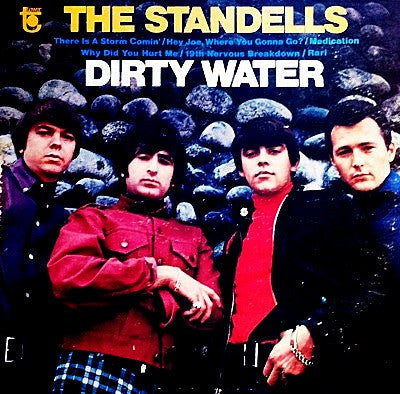 Standells, The / Dirty Water, LP