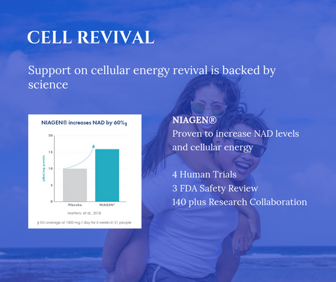 Niagen Information - Cell Revival - S-Cell Health & Beauty Supplements