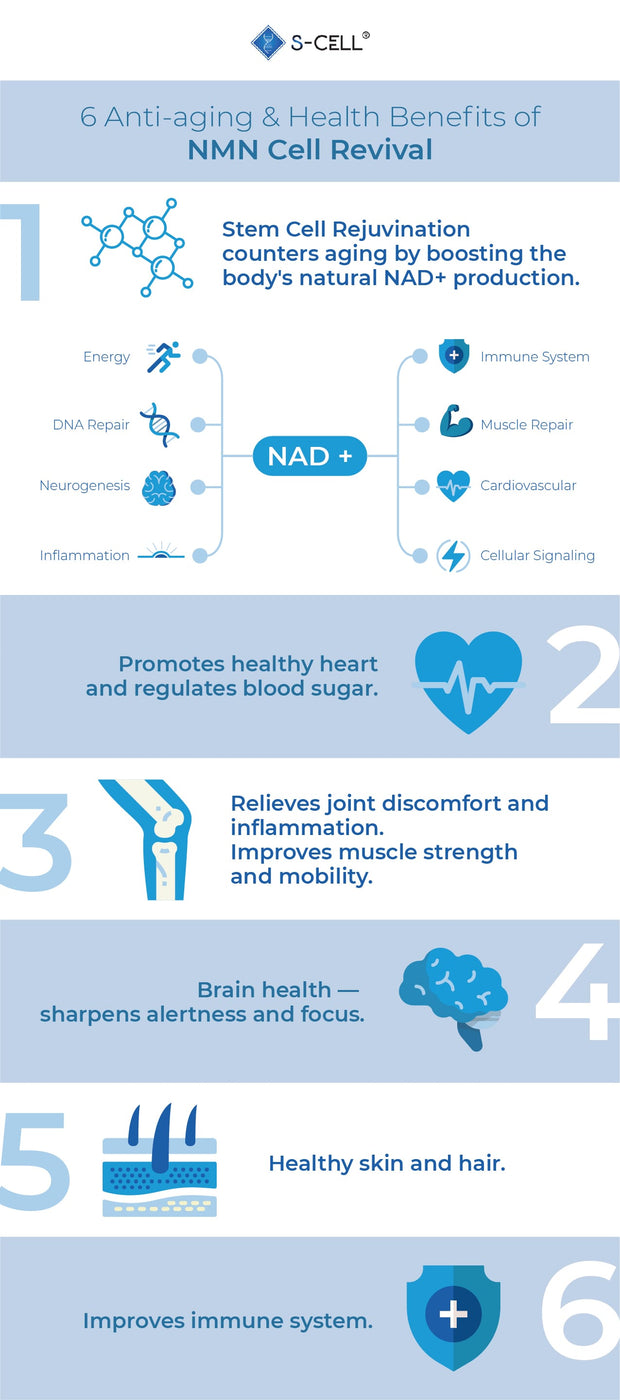 nmn-health-benefits