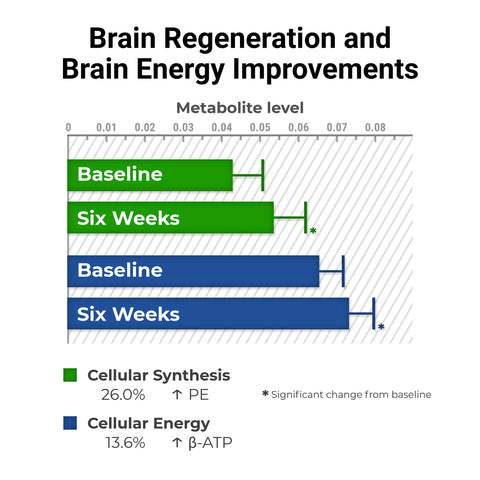 brain-regeneration-process