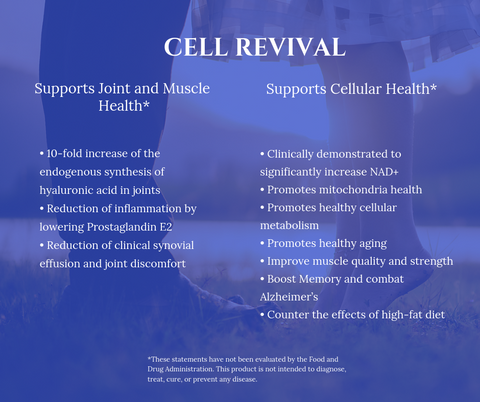 Benefits of Using - Cell Revival - S-CELL Health & Beauty