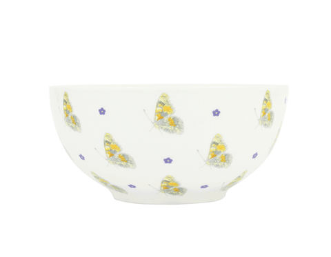 Painted Lady Breakfast Bowl