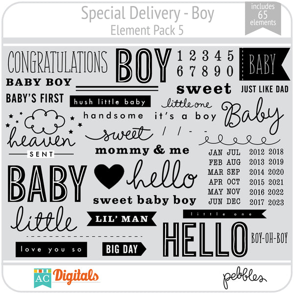 Special Delivery - Boy Element Pack 5