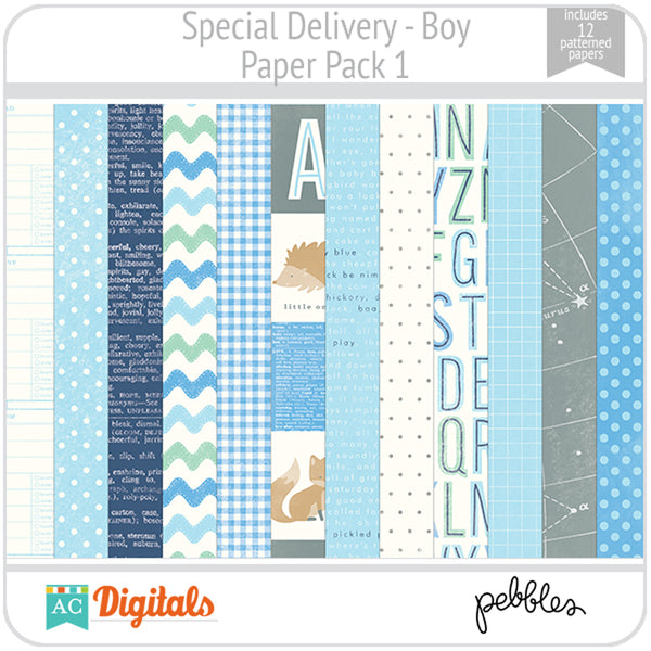 Special Delivery - Boy Paper Pack 1