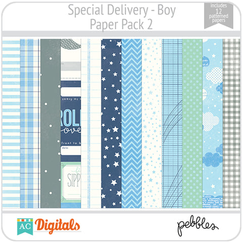 Special Delivery - Boy Paper Pack 2