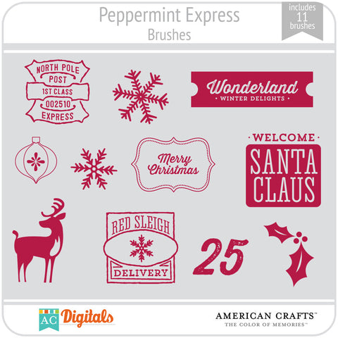 Peppermint Express Brush Set