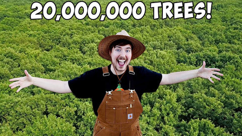 mrbeast team trees