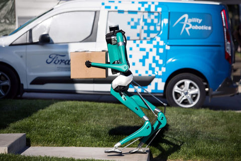 ford delivery robot