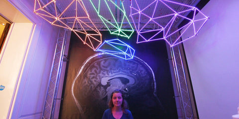 brain uon lights activity