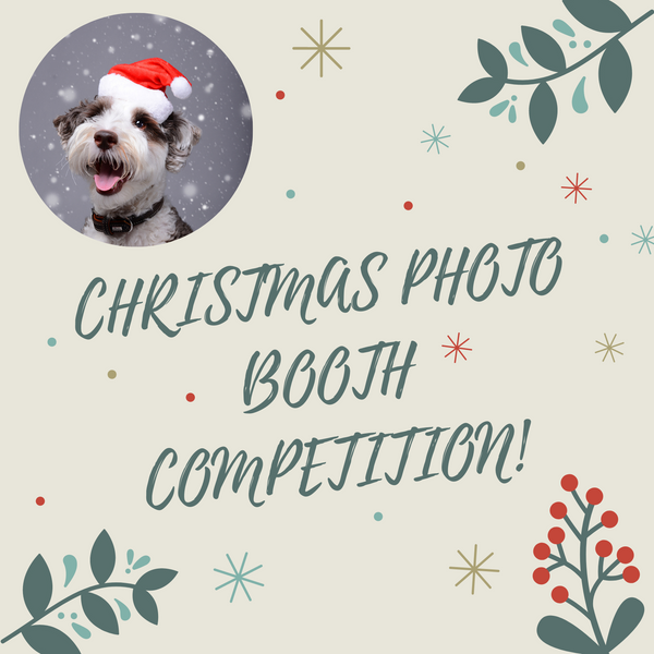 CHRISTMAS PHOTO BOOTH WINNERS!