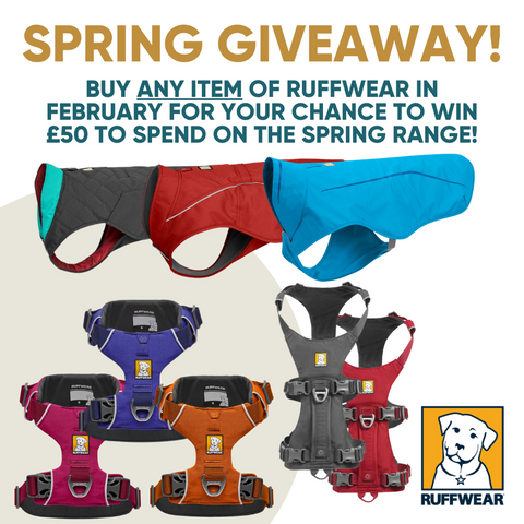Ruffwear spring launch competition