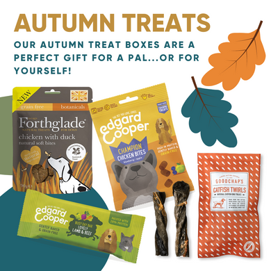 Autumn Treats Box - Duck/Lamb/Chicken/Fish!