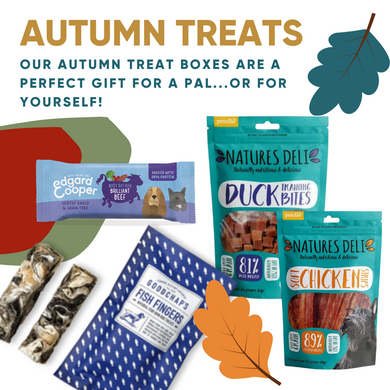 Autumn Treats Box - Fish/Duck/Chicken/Beef!