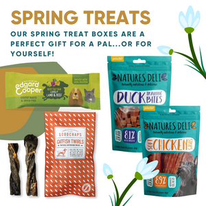 Spring Treats Box - Duck/Lamb/Chicken/Fish!