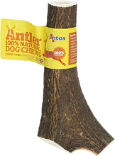 Load image into Gallery viewer, Antos Antler Large (151-220g)