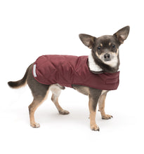 Load image into Gallery viewer, Mutts & Hounds Grape Quilted Coat