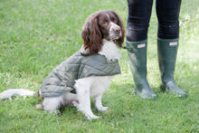 Load image into Gallery viewer, Mutts & Hounds Olive Quilted Coat