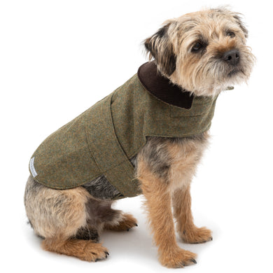 Mutts & Hounds Forest Green Tweed Coat