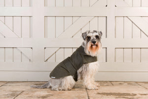 Mutts & Hounds Olive Waxed Coat