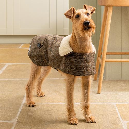 Mutts & Hounds Heritage Tweed Coat