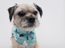 Load image into Gallery viewer, *Exclusive* Winter Scene Bandana