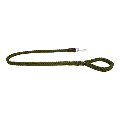 Earthbound Braided Leash - Green