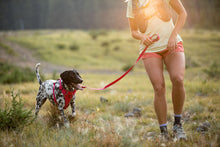 Load image into Gallery viewer, Ruffwear Front Range™ Lead - Red Sumac