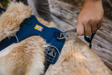 Load image into Gallery viewer, Ruffwear Front Range Dog Harness in Blue Moon