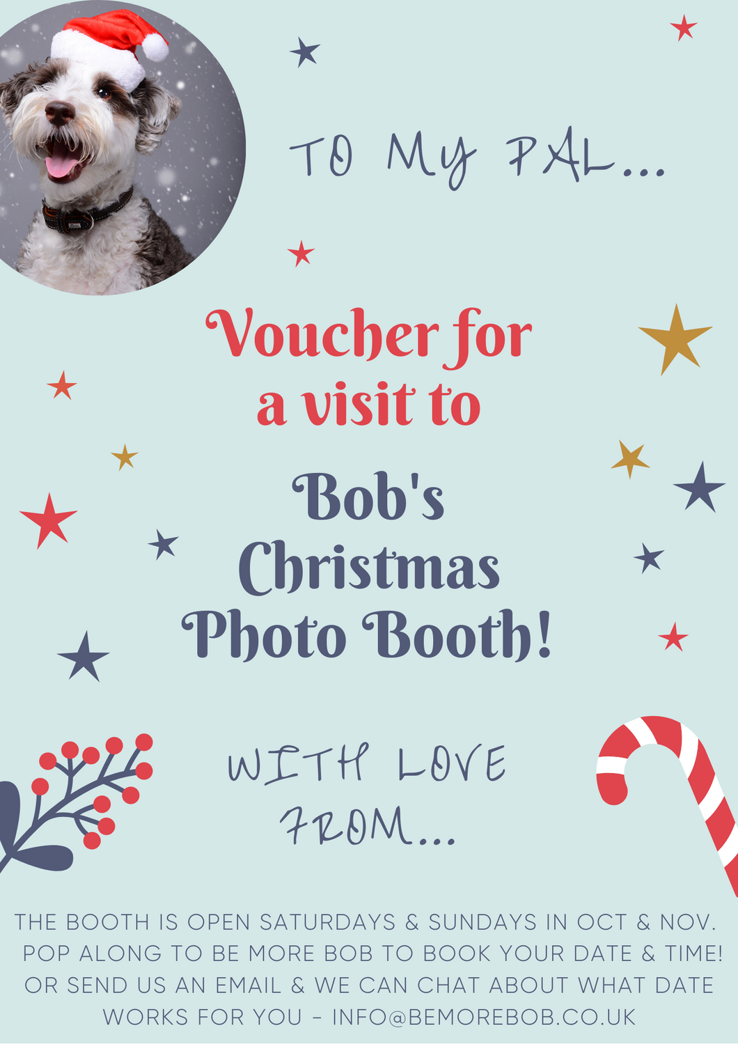 Voucher for Bob's Christmas Photo Booth - send to your best pals!