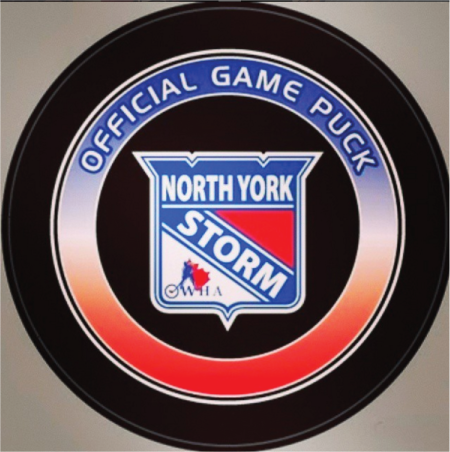 NYS Official Puck