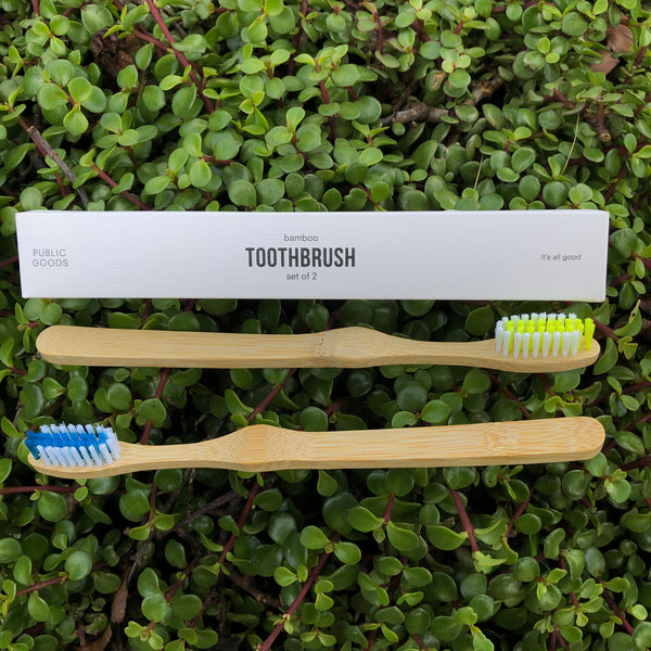 Bamboo Toothbrush (2-pack)