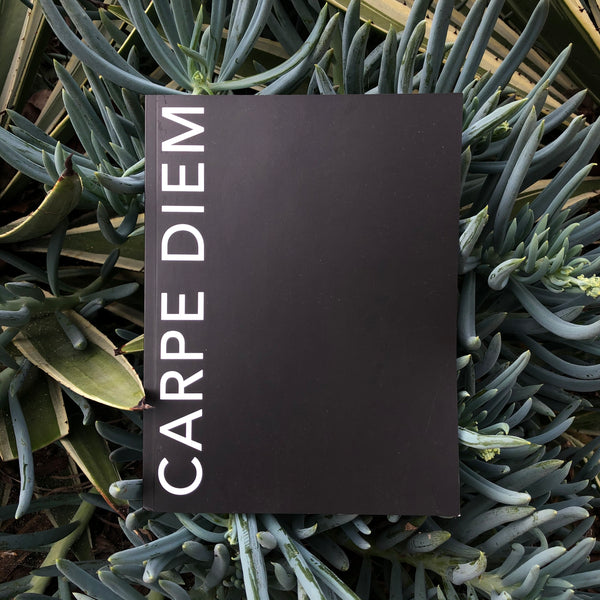 CARPE DIEM: 106 page everyday notebook JOURNAL