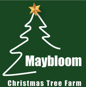 Maybloom Christmas Tree Farm