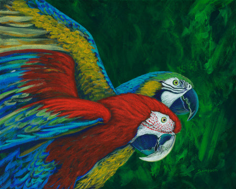 Rainforest Rhapsody - signed limited edition print by Cynthia Sampson