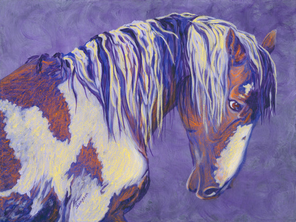 Picasso Wild Stallion- signed limited edition print by Cynthia Sampson- 10% from each sale donated to AWHC