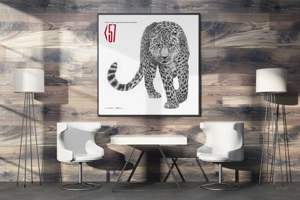 Amur Leopard - Signed Limited Edition Print by Peter Matthews