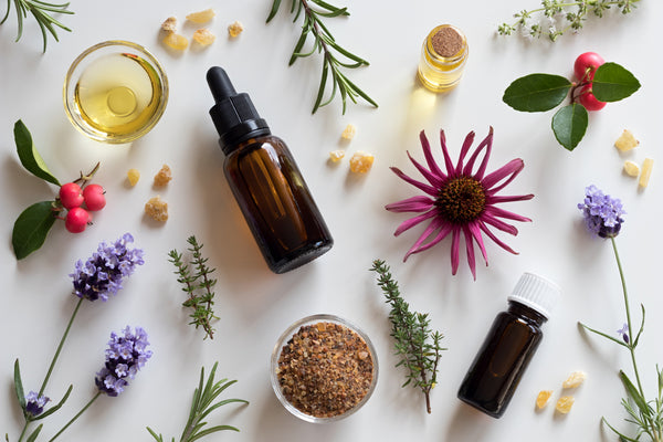 echinacea flower and other essential oils