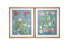 Load image into Gallery viewer, Botanic Floral Framed Prints