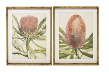 Load image into Gallery viewer, Protea Framed Prints