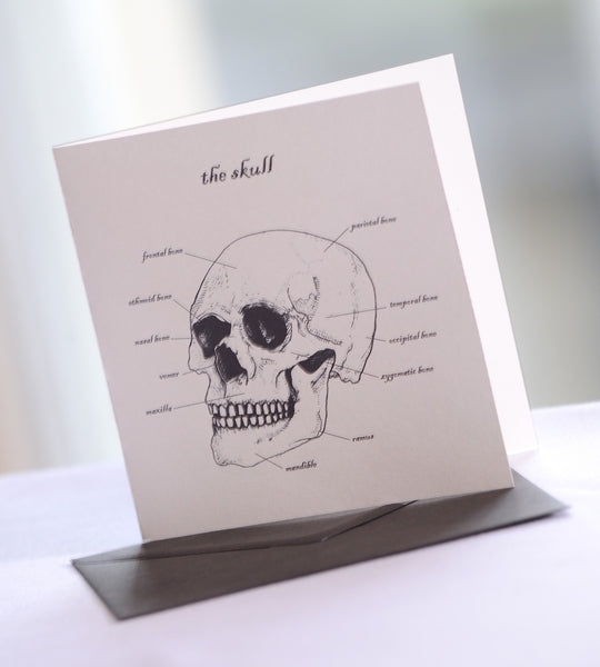 RCPSG Skull Greeting Cards