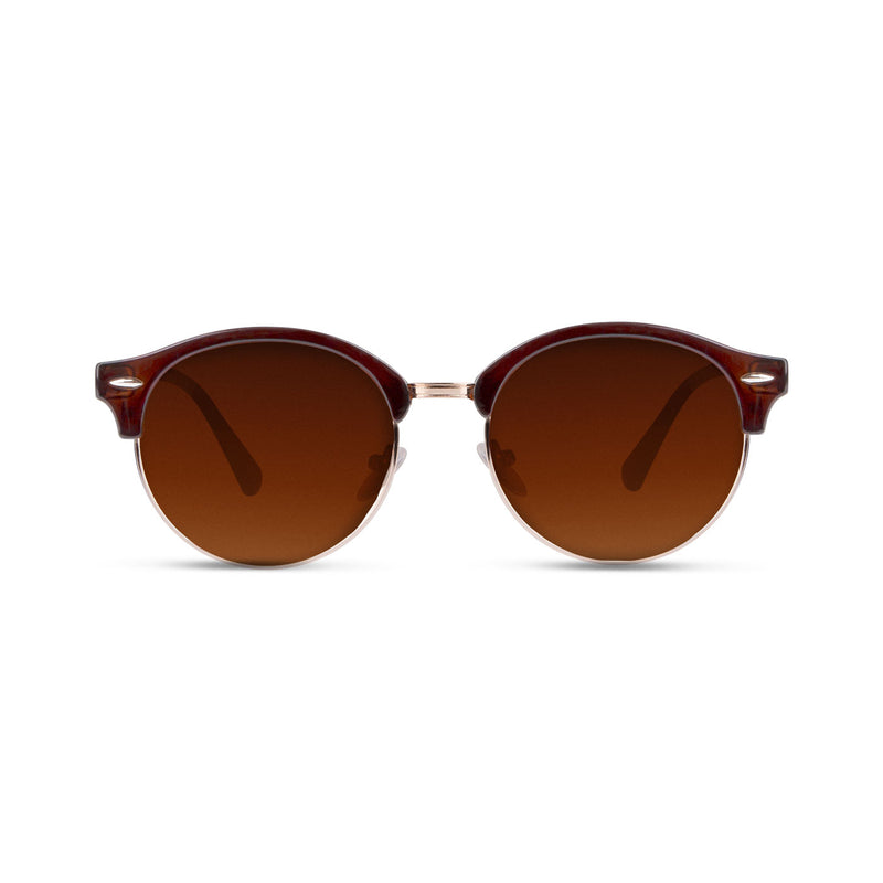 Tatura Shinny Brown Gold / Brown Sunglasses