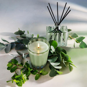 NEW!! Nest Wild Mint & Eucalyptus Classic Candle