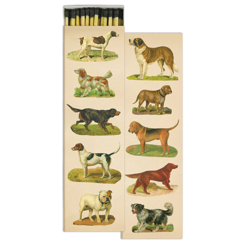 John Derian Matchbox- Dog Collage