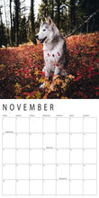 Load image into Gallery viewer, Loki Calendar